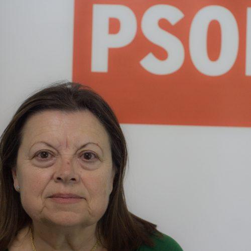 Comisión Ejecutiva Municipal Sa-de-Distrito-Beiro_Pilar-Polo-Jerónimo-500x500