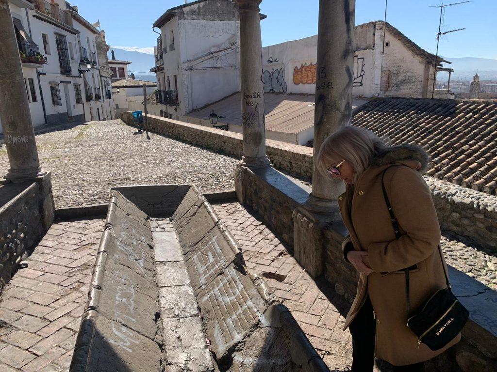 EL PSOE EXIGE AL EQUIPO DE GOBIERNO UNA INTERVENCIÓN EN EL LAVADERO DEL SOL EN EL REALEJO De-Leyva-en-una-visita-al-Mirador-del-Realejo-1024x768